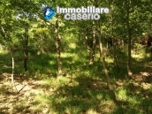 Stone farmhouse with adjoining wooden house used as a spa, for sale Molise, Italy 16