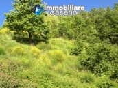 Stone farmhouse with adjoining wooden house used as a spa, for sale Molise, Italy 17