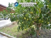 House with a garden divided two apartments for sale Casalbordino, Abruzzo, Italy 41