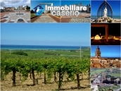 House with a garden divided two apartments for sale Casalbordino, Abruzzo, Italy 43