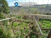 Buy a house near the coast with livable outdoor space in Abruzzo, Pollutri 28