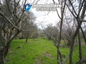 Properties with land with new roof for sale in Abruzzo, Furci 17