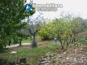 Properties with land with new roof for sale in Abruzzo, Furci 5