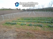 Large old brick farmhouse with land for sale in Vasto, Trabocchi Coast, Abruzzo 22