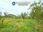 Renovated property with garden for sale in Italy - home buying in Abruzzo 7