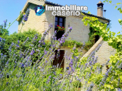 Renovated house with garden and terrace for sale in Città Sant'Angelo, Pescara 13