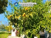 House with garden near the sea for sale in Casalbordino, Abruzzo, Italy 34