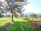 Building for sale with hectares of arable land and planted with olive trees, Italy 14