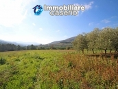 Building for sale with hectares of arable land and planted with olive trees, Italy 15