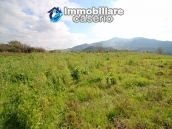 Building for sale with hectares of arable land and planted with olive trees, Italy 5