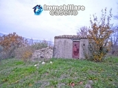 Stone house with well, land with fruit trees and olive trees 10