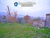 Stone house with well, land with fruit trees and olive trees 11