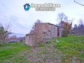Stone house with well, land with fruit trees and olive trees 12