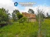 Stone house with well, land with fruit trees and olive trees 16