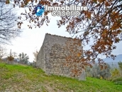 Stone house with well, land with fruit trees and olive trees 4