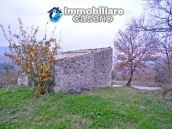 Stone house with well, land with fruit trees and olive trees 6