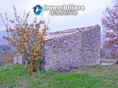 Stone house with well, land with fruit trees and olive trees 7
