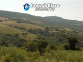Italy property for sale, rustic cottage in Palmoli Abruzzo 24