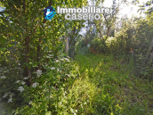 Ancient stone house with garden for sale in Italy, Abruzzo, Roccaspinalveti 4