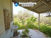 Cottage with sea view and flat land of about 2 hectares for sale in Abruzzo 11