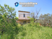 Cottage with sea view and flat land of about 2 hectares for sale in Abruzzo 16