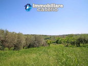 Cottage with sea view and flat land of about 2 hectares for sale in Abruzzo 17