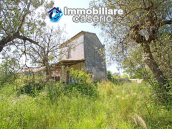 Cottage with sea view and flat land of about 2 hectares for sale in Abruzzo 18