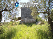Cottage with sea view and flat land of about 2 hectares for sale in Abruzzo 20