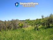 Cottage with sea view and flat land of about 2 hectares for sale in Abruzzo 24