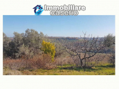 Cottage with sea view and flat land of about 2 hectares for sale in Abruzzo 6