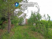 House surrounded by greenery with a large terrace for sale in Scerni, Abruzzo 9