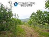 House surrounded by greenery with a large terrace for sale in Scerni, Abruzzo 10
