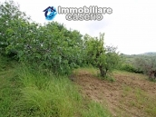 House surrounded by greenery with a large terrace for sale in Scerni, Abruzzo 6