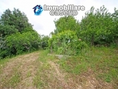 House surrounded by greenery with a large terrace for sale in Scerni, Abruzzo 7