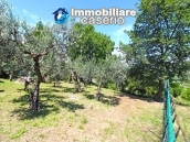 Country house for sale in Pollutri 15 minutes from the sea, Abruzzo 6