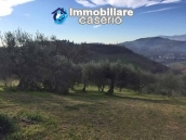 Independent house with land and olive trees for sale in the Province of Teramo 12