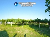 Country house with possibility to build a swimming pool for sale in Abruzzo, Italy 17
