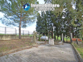 Independent house surrounded by greenery for sale Montenero di Bisaccia, Molise 3