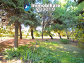 Country house with garden for sale in Pollutri, 15 minutes from the sea, Abruzzo 52
