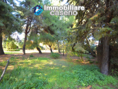 Country house with garden for sale in Pollutri, 15 minutes from the sea, Abruzzo 53