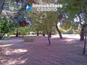 Country house with garden for sale in Pollutri, 15 minutes from the sea, Abruzzo 59