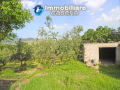 Property with garage and fenced garden for sale in the Abruzzo Region 5