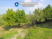 Property with garage and fenced garden for sale in the Abruzzo Region 7