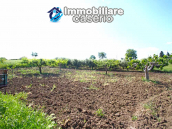 Detached and habitable house located in the countryside for sale in Molise Region 15