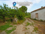 Country house with 20.000 square meters of land for sale in the Molise region 10