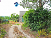 Country house with 20.000 square meters of land for sale in the Molise region 5