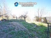 House with garden for sale in Tornareccio, a town called the Queen of Honey 30