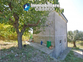 Habitable house for sale in the Molise countryside, a few km from the Adriatic coast 15