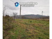 Country house with outbuildings for sale in Guilmi countryside, on the Abruzzo hills 12