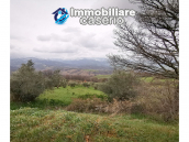 Country house with outbuildings for sale in Guilmi countryside, on the Abruzzo hills 9